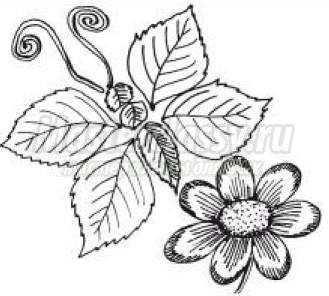 Цветы для любы открытка 22