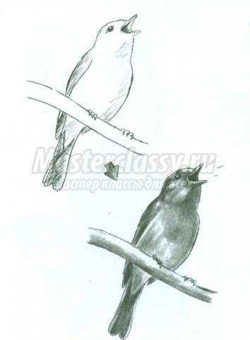 рисуем животных живущих в лесу и на лугу мастер-класс с фото