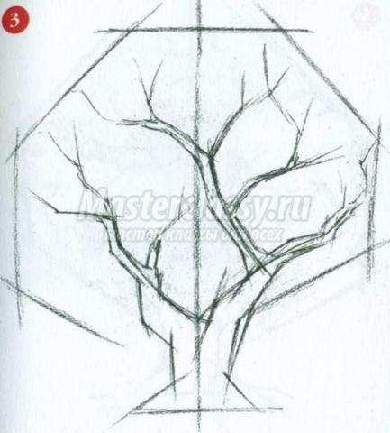 рисунок дуба: