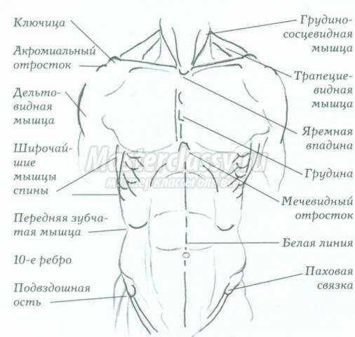 Схема ориентиров